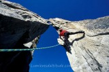 ALPINIST CLIMBING THE GREPON, MASSIF OF MONT-BLANC, HAUTE-SAVOIE, FRANCE