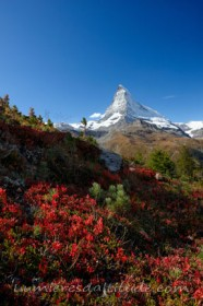FALL COLORS AND CERVIN, MATTERHORN, VALAIS, SUISSE