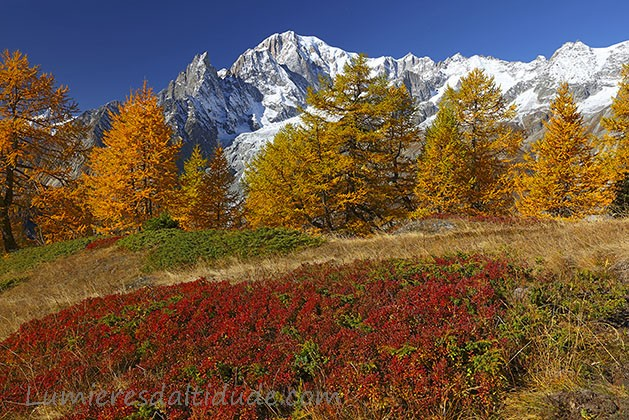 Autumn in Mont-Blanc
